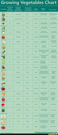 if I ever get around to making the raised garden on our balcony this will come growing vegetables chart.if I ever get around to making the raised garden on our balcony this will come in handy! Hydroponic Gardening, Organic Gardening, Container Gardening, Gardening Tips, Vegetable Gardening, Veggie Gardens, Urban Gardening, Planting Vegetables, Texas Gardening