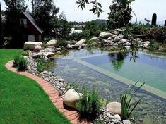 56 Backyard Ponds And Water Garden Landscaping Ideas (68) Natural Swimming Ponds, Natural Pond, Swimming Pools, Lap Pools, Indoor Pools, Backyard Beach, Ponds Backyard, Beach Pool, Backyard Waterfalls