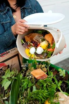 kitchen counter composting, composting, go green, homesteading, All vegetable kitchen scraps plus eggshells and coffee grounds can be stored for a few days odor free with a tight fitting lid