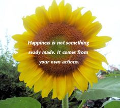 Happiness quote   see more inspiration  http://thegardeningcook.com/inspirational-happiness-sayings/
