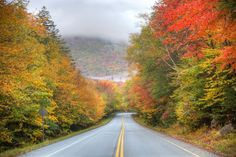 New Hampshire's Kancamagus Highway is New England's best scenic drive. Plan a Kancamagus Highway trip with this 'Backroads of New England' driving tour.