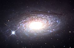 The Sunflower Galaxy (also known as Messier 63, M63, or NGC 5055) is a spiral galaxy in the constellation Canes Venatici consisting of a central disc surrounded by many short spiral arm segments. The Sunflower Galaxy is part of the M51 Group, a group of galaxies that also includes the Whirlpool Galaxy (M51).
