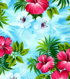 Tropical Fabric - Pink Hibiscus On Sky Blue Poplin