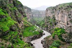 Kurdstan  on We Heart It