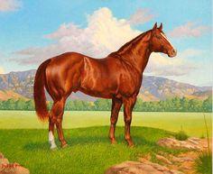 Zantanon, 1917 quarter horse stallion by Little Joe out of Jeanette