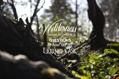 The wilderness holds answers to questions we have not yet learned to ask.