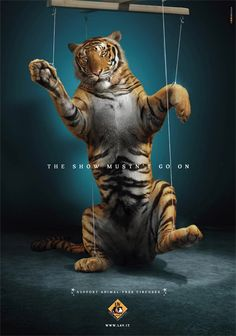Wild Life So sad :( Support Animal Free Circuses animals are not food Fondation Brigitte Bardot, Advertisement Examples, Live Animals, Stop Animal Cruelty, Stop Animal Testing, Powerful Images, Animal Protection, Animal Posters, Poster Ads