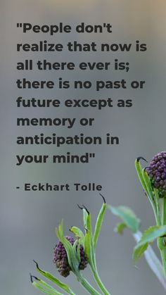 """there is no past or future except as memory or anticipation in your mind"""" - Eckhart Tolle Spiritual Quotes, Wisdom Quotes, Positive Quotes, Motivational Quotes, Inspirational Quotes, Now Quotes, Quotes To Live By, Cool Words, Wise Words"""