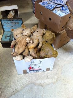Battered & Tattered Teddies!! Please take us home with you!! spotted at Newark Antique fair