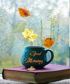 good morning wishes & good morning - good morning quotes - good morning quotes inspirational - good morning quotes for him - good morning wishes - good morning beautiful - good morning greetings - good morning images Good Morning Nature, Good Morning Images Flowers, Good Morning Beautiful Images, Good Morning Images Hd, Good Morning Image Quotes, Sunday Images, Good Morning Thursday, Good Morning Greetings, Good Morning Good Night