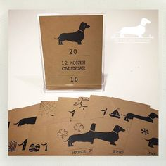 It's the last day of 2015! Auld Lang Syne and cheers to a doxie-filled 2016! ❤️ Find this desk calendar and many more in our shop. Thanks to a lovely customer for sharing this great photo!  #ilovepickledogdesign