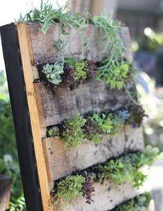 DIY Pallet DIY recycled pallet vertical garden