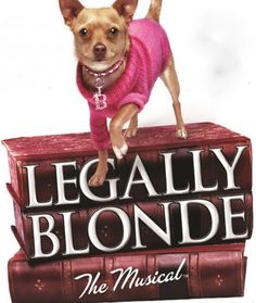 "The talented CAB High School students proudly present ""Legally Blonde the Musical"" - See more at: http://northdelawhere.happeningmag.com/event/cab-calloway-school-arts-presents-legally-blonde-musical?instance_id=1997164#sthash.KZE6CuxM.dpuf"