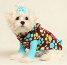 Bright Paws Hoodie Dress! @Candi Hardwick you should get this for your little devil!
