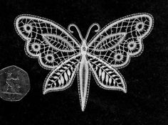 Bedfordshire lace - I have also made this motif in colours Quilling Butterfly, Crochet Butterfly, Butterfly Pattern, Bobbin Lace Patterns, Embroidery Patterns, Needle Lace, Needle And Thread, Romanian Lace, Bobbin Lacemaking