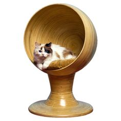 Eco-friendly bamboo cat pod with a coordinating cushion.  Product: Cat bed      Construction Material: Bamboo and fab...