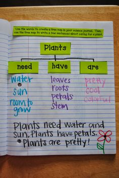 Interactive Science Journals: plants