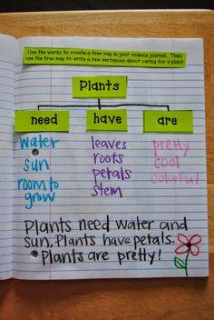 Interactive Science Journals: plants