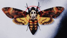 The skull that appears on the moth from the Silence Of the Lambs poster is actually a Salvador Dali photo of 7 naked women. Salvador Dali Gemälde, Salvador Dali Paintings, Hannibal Lecter, Lamm Tattoo, Butterfly Symbolism, Deaths Head Moth, Keys Art, Cultura Pop, Butterfly
