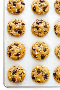 Salted Whole Wheat Chocolate Chip Cookies -- soft and chewy, easy to make, and absolutely heavenly! | gimmesomeoven.com