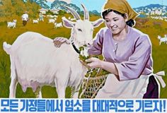 North Korean propaganda poster: Let's extensively raise goats in all families Kim Jong Il, Propaganda Art, Political Economy, Political Posters, Smiling Man, Korean Art, New Poster, China, Vintage Posters