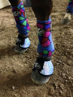 Movins rocking her spring line. Pro choice boots.  I LOVE these!