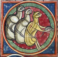 cats bestiary, England 13th century British Library, Harley 4751, fol. 30v