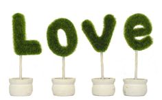 St?love Artificial Plants Potted Bonsai Creative Home Decor Indoor ** Be sure to check out this awesome product.