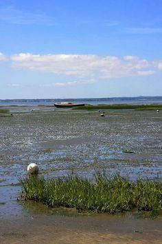 Bassin d' Arcachon