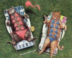 #bikinis #cats