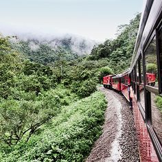 Ecuador. Via T+L (www.travelandleisure.com). Ecuador's Tren Crucero—a restored 1900's steam locomotive—runs from the Andes to the Pacific Ocean, with stretches past the 19,347-foot Cotopaxi Volcano and the Devil's Nose, a daunting series of switchbacks.