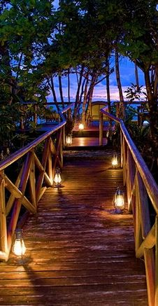 Garden walk - don't know if this is Hawaii, but it sure looks like it. Sigh.