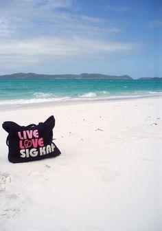 perfect beach bag!