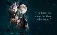 Wolf Wolf Stuff, Wolf Love, Native American Indians, Pisces, Music, Movie Posters, Birth, Thoughts, Sayings
