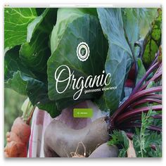 organicgourmet-healthy-food-html-website-theme-template