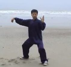 Wu Style Tai Chi  – Long Form