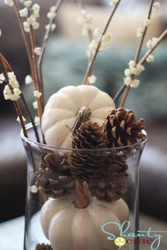 White pumpkins and pinecones fall display