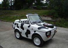 STRANGE LITTLE COW CAR - MINI CONVERTIBLE infomotori.com
