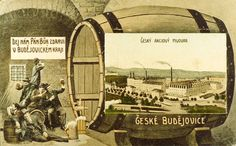 The direct predecessor of the Budweiser Budvar brewery as a national enterprise was the Czech Share Brewery. It was founded in 1895 and its activity directly related to the historical tradition of brewing of beer in České Budějovice which dates back to the 13th century when the town was founded chartered for brewing rights.