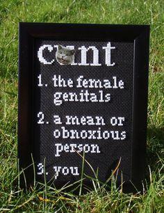 Definition Of A Cunt  framed cross stitch by doaflip on Etsy, $35.00