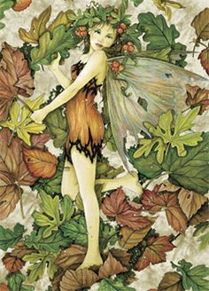 Leaf Fairy looks to have been done by Linda Ravenscroft