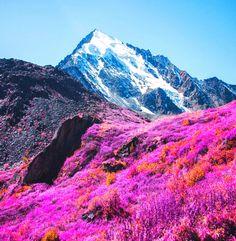 Ushguli Svaneti Georgia
