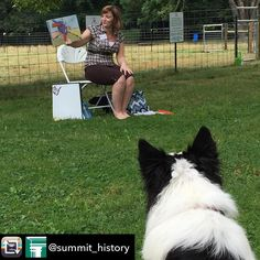"""Too cute!  #scretreats #tw Repost from @summit_history using @RepostRegramApp - #Repost @modiboandrudy with @repostapp  Lincoln listens to Ms. Erica read """"Digby Takes Charge"""": a book about a sheepdog! Story time with the sheep! @summit_history #manners #summithistory #bordercollielover #bordercollieworld #bordercollielife #bordercollies #bordercollie #lincoln #muttonhill #muttonhillsheep #ewedog #farm365 #farmdog #akronlife #akronlove #akron #familyfun"""