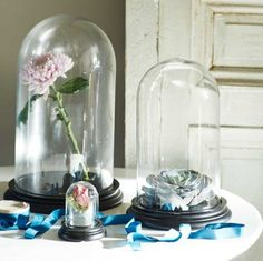 mywarehousehome.com wp-content uploads 2015 08 Graham-and-Green-Bell-Jars.jpg?b2f07d