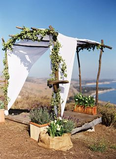 The canopy was adorned with fresh hops; potted lavender and calla lilies. Photo by Susan Dean.