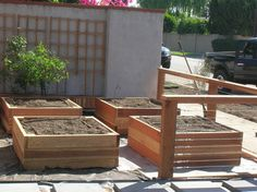 LA Times food critic Russ Parsons' front yard vegetable gardens