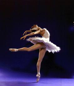 Bailarina De Ballet - Learn to dance at BalletForAdults.com!