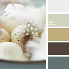 Color Palette: 1134