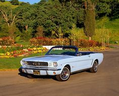 1964 Baby Blue Ford Mustang Convertible <3