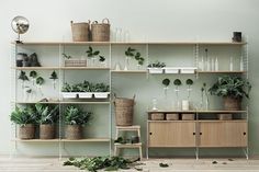 String System shelving. Available in Australia from Great Dane Furniture.